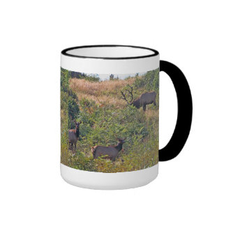 6 Point Bull Elk and Two Cows Wildlife Photo Ringer Mug