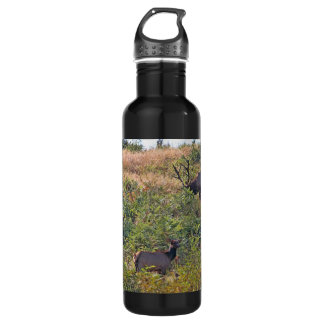 6 Point Bull Elk and Two Cows Wildlife Photo Stainless Steel Water Bottle
