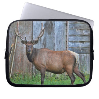 6 Point Bull Elk Photo Computer Sleeves