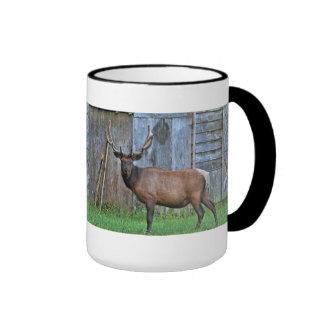 6 Point Bull Elk Photo Ringer Mug