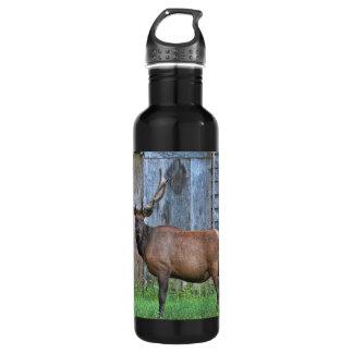 6 Point Bull Elk Photo Stainless Steel Water Bottle