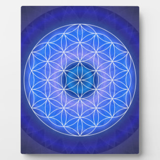 6 The third eye chakra created by Tutti Plaque