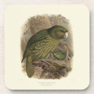 6 Vintage Science NZ Birds - Kakapo Coasters