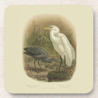 6 Vintage Science NZ Birds - NZ Herons Coasters