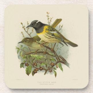 6 Vintage Science NZ Birds - Stitch Bird Coasters