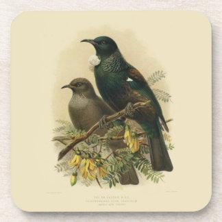 6 Vintage Science NZ Birds -  Tui Coasters