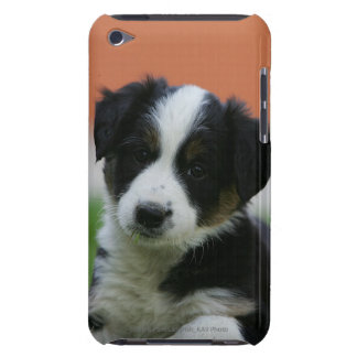 6 Week Old Border Collie iPod Touch Case