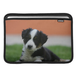 Macbook Air Sleeve with Collie Phone Cases design