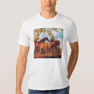 6a   Mares and Foals T Shirt
