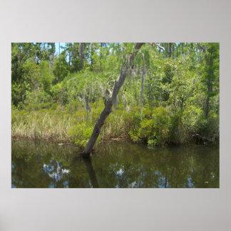 6ft Marsh Tree Poster