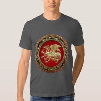 [700] Icelandic Dragon, Landvættir [Gold] Tee Shirt