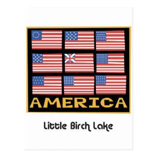 704 Flag 9 flags Postcard