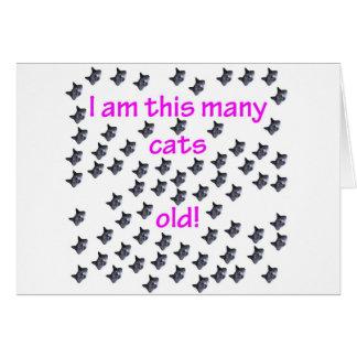 70 cabezas del gato viejas tarjeta de felicitación