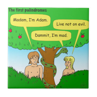 715 adam and eve palindromes cartoon small square tile