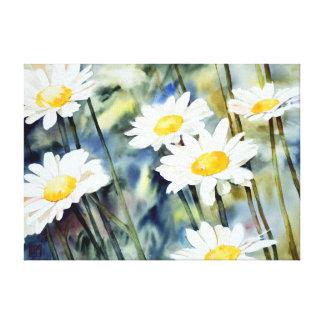 #7318 daisy watercolor canvas print