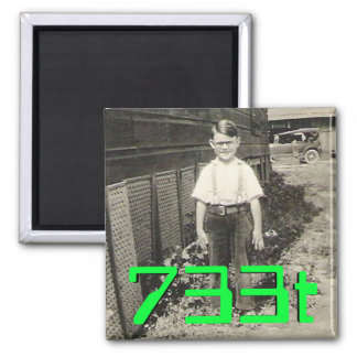 733t 2 inch square magnet