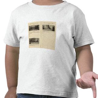 73941 Albany Camisetas