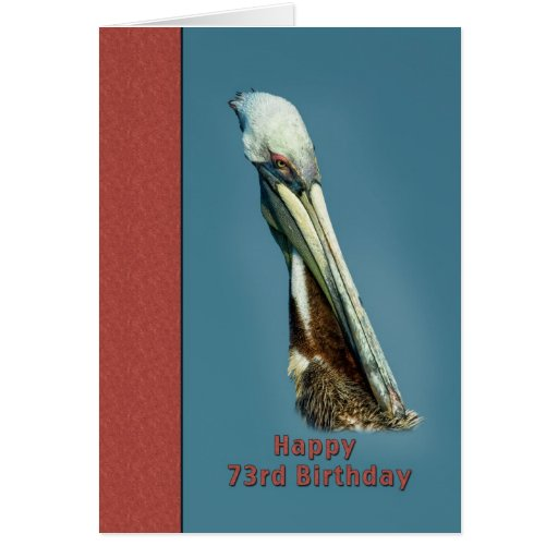 73rd Birthday Card with Brown Pelican