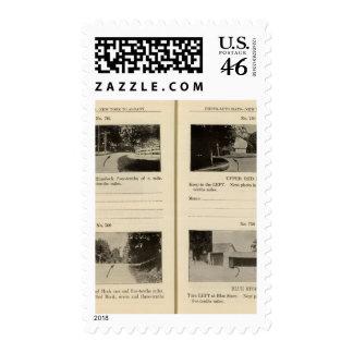 75861 Rhinebeck Upper Red Hook Blue Store Stamp
