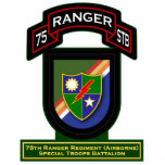 75th Ranger Rgt - Airborne - Special Troops Bn Cut Outs