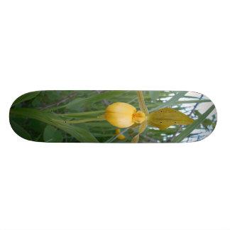 "7.75"" Skateboarding Deck"
