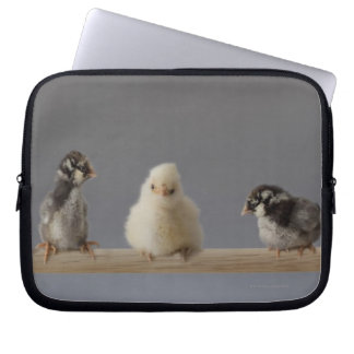 7 Baby Pet Chickens on a Perch Computer Sleeve