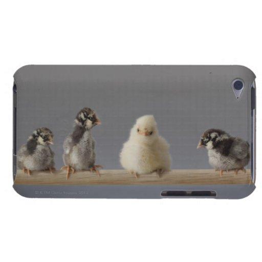 7 pollos del mascota del bebé en una perca iPod touch Case-Mate protector