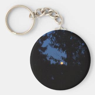 7th February 2012 - Full Moon - Ice Moon Basic Round Button Keychain