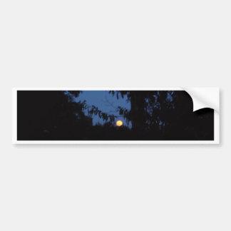 7th February 2012 - Full Moon - Ice Moon Bumper Sticker
