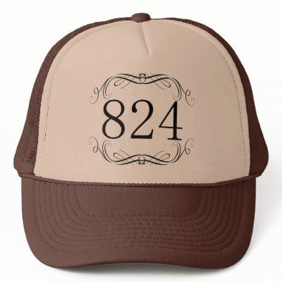 824_area_code_hat-p148195219910022400bfsbr_400.jpg
