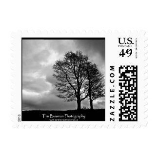 8396796510_4ca02f4c3d_h.jpg postage stamp