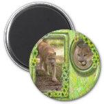 85-cougar-st-patricks-0003 fridge magnets