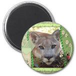 85-cougar-st-patricks-0016 refrigerator magnets