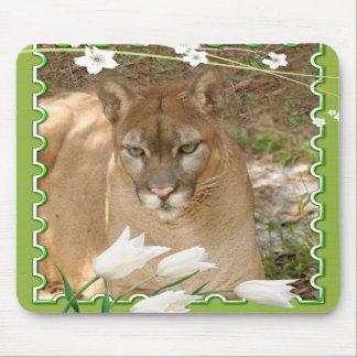 85 cougar-st-patricks-0052 alfombrillas de ratón