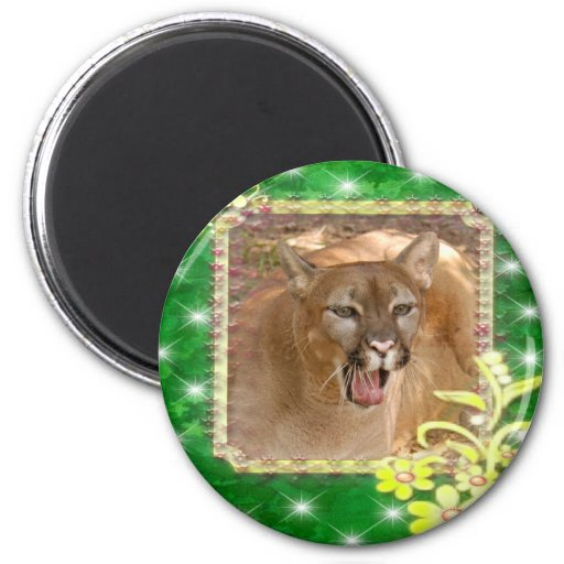 85-cougar-st-patricks-0078 refrigerator magnet
