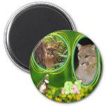 85-cougar-st-patricks-0087 refrigerator magnets
