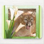 85-cougar-st-patricks-0088 mousepad