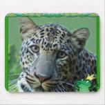 85 leopard-st-patricks-0022 tapetes de ratones
