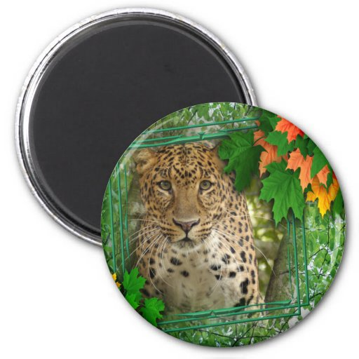 85 leopard-st-patricks-0030 imán redondo 5 cm