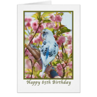 85th Birthday Card with Blue Parakeet