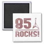 85th Birthday Rocks Magnets