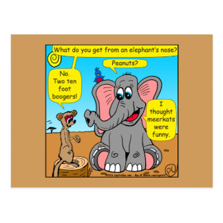 872 elephants and meerkat nose cartoon postcard