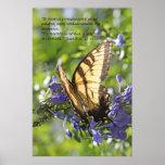 8:31 de Juan - tigre Swallowtail de Mariposa de la Impresiones