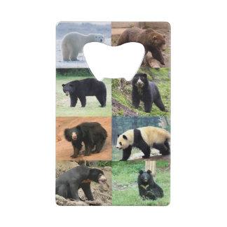 8 bears forever bears of the world credit card bottle opener