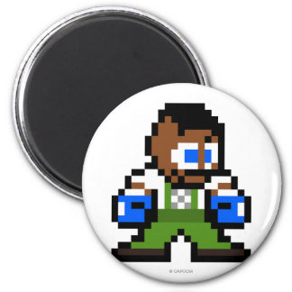 8-Bit Dudley Magnet