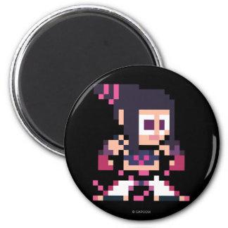 8-Bit Juri Magnet