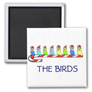 8 Budgies 2 Inch Square Magnet