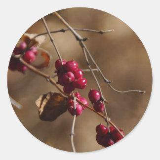 8-mile creek berries classic round sticker