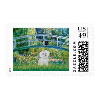 8 perrito maltés - puente timbres postales