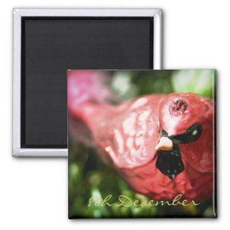 8th December • Red Cardinal • Magnet